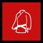 begin martial arts